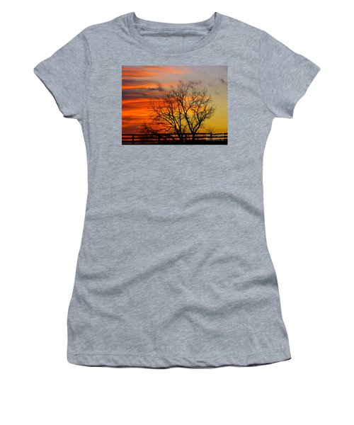 Women's T-Shirt featuring the photograph Painted By The Sun by Donald C Morgan