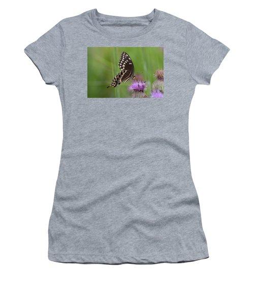 Palamedes Swallowtail And Friends Women's T-Shirt