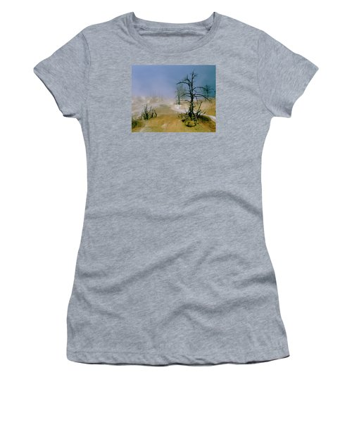 Palette Spring Women's T-Shirt (Junior Cut) by Ed  Riche