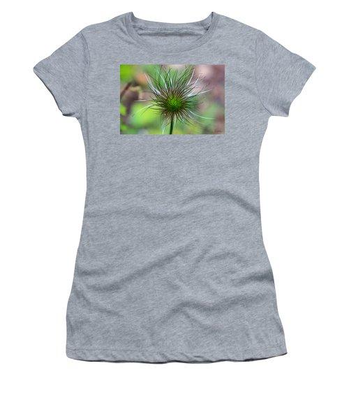 Pasque Fluff Women's T-Shirt