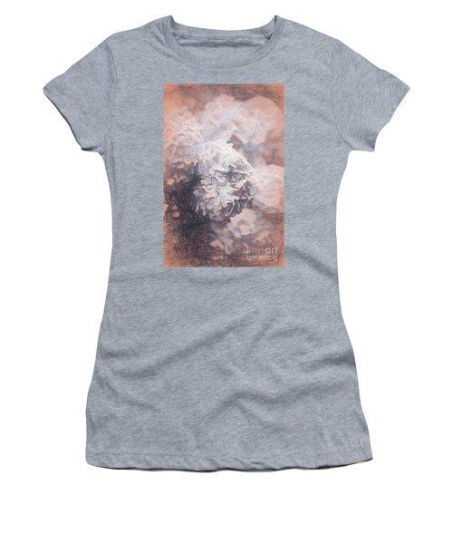 Pastel Hyrangeas Women's T-Shirt