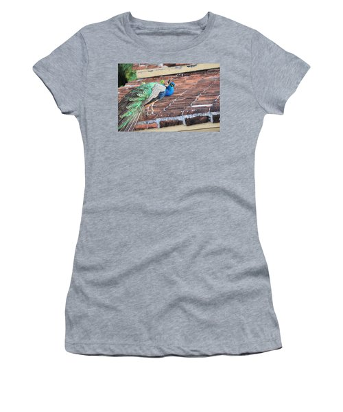 Peacock On Rooftop Women's T-Shirt