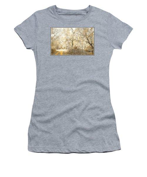 Pennsylvania Autumn Woods Women's T-Shirt (Athletic Fit)