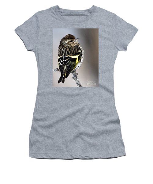 Pine Siskin Women's T-Shirt (Athletic Fit)