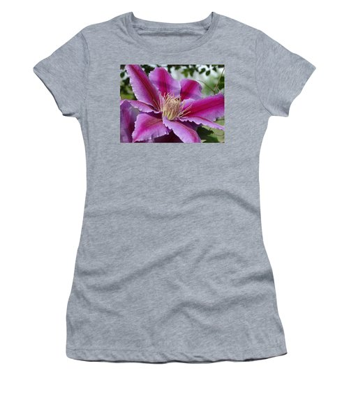 Pink Clematis Vine Women's T-Shirt (Athletic Fit)