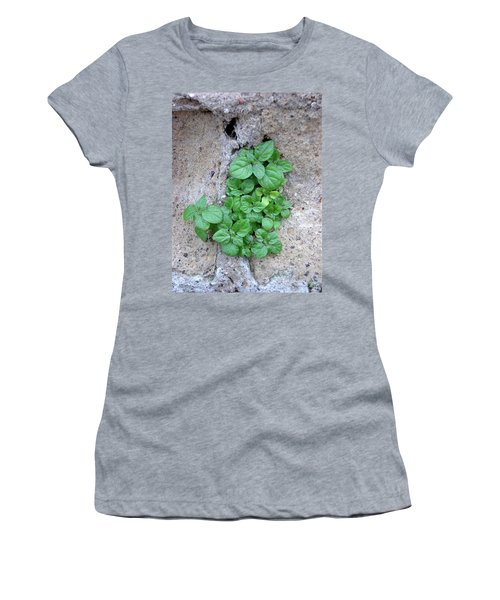 Plant In Stone Naples Italy Women's T-Shirt (Athletic Fit)