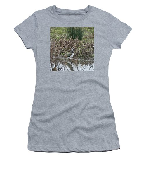 Portrait Of Beautiful Lapwing Bird Seen Through Reeds On Side Of Women's T-Shirt (Athletic Fit)
