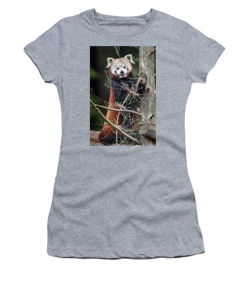 Portrat Of A Content Red Panda Women's T-Shirt (Athletic Fit)