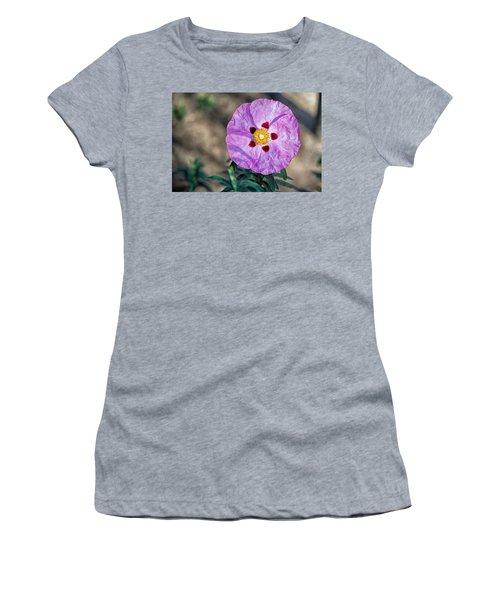 Purple Rockrose Women's T-Shirt