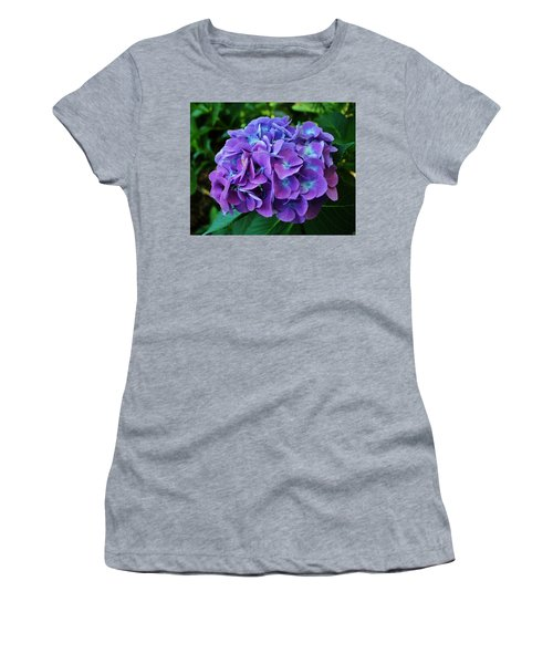 Purple Hydrangea Women's T-Shirt