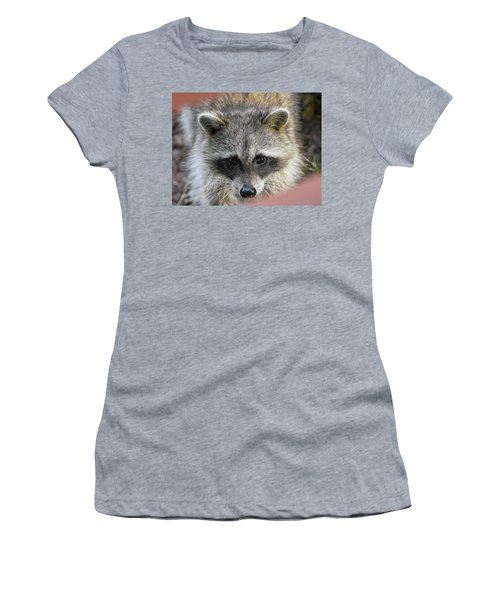 Raccoon's Gorgeous Face Women's T-Shirt (Athletic Fit)