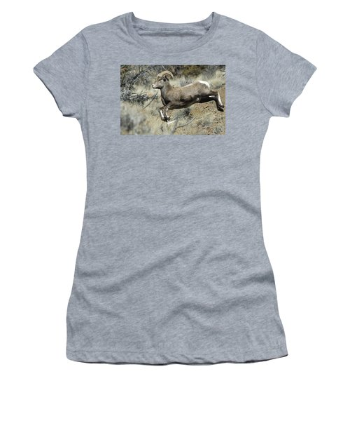 Ram In A Hurry Women's T-Shirt