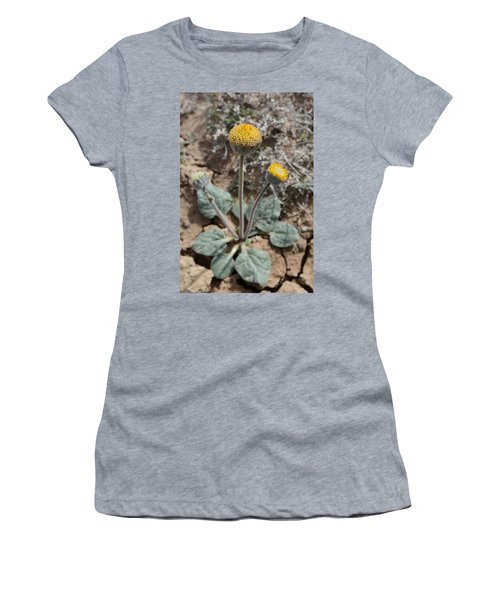 Rayless Daisy Women's T-Shirt (Athletic Fit)