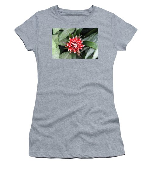 Red Flower With White Tips Women's T-Shirt