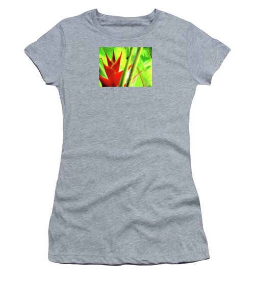 Red Heliconia Women's T-Shirt