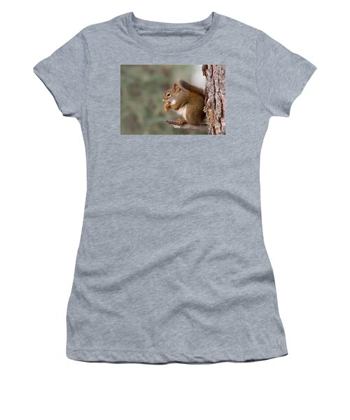 Red Squirrel Women's T-Shirt (Athletic Fit)
