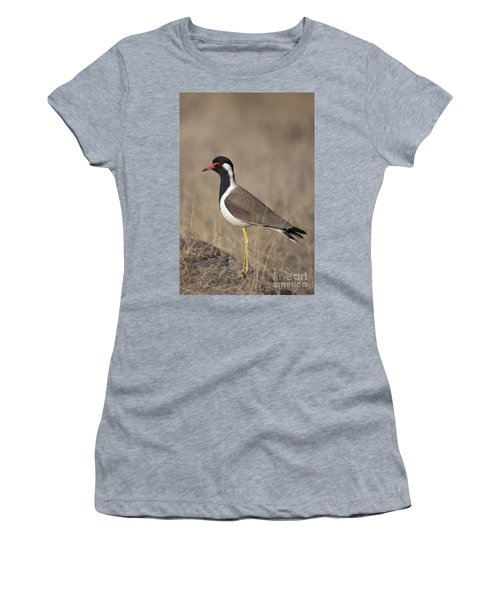 Red-wattled Lapwing Women's T-Shirt (Athletic Fit)