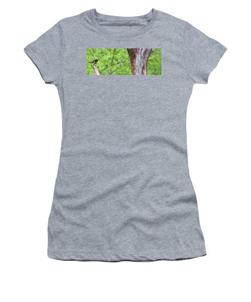 Redstart Women's T-Shirt