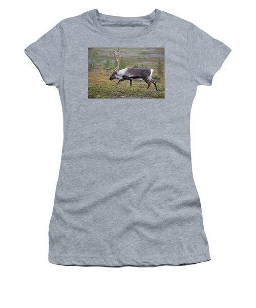Reindeer Women's T-Shirt (Junior Cut) by Aivar Mikko