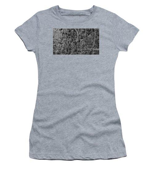 Reminder Of Winter  Women's T-Shirt