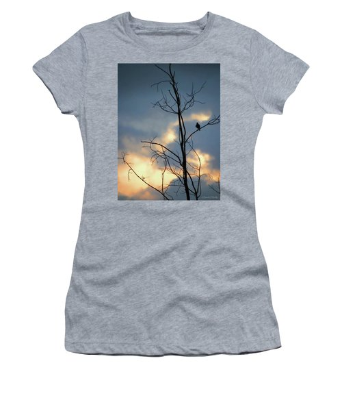 Women's T-Shirt (Junior Cut) featuring the photograph Robin Watching Sunset After The Storm by Sandi OReilly