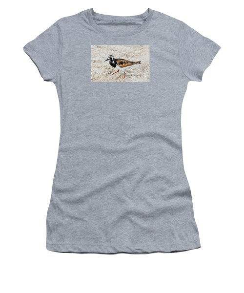 Ruddy Turnstone Women's T-Shirt (Junior Cut) by Kenneth Albin