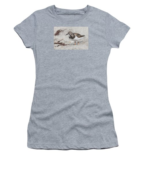Ruddy Turnstone On The Beach Women's T-Shirt