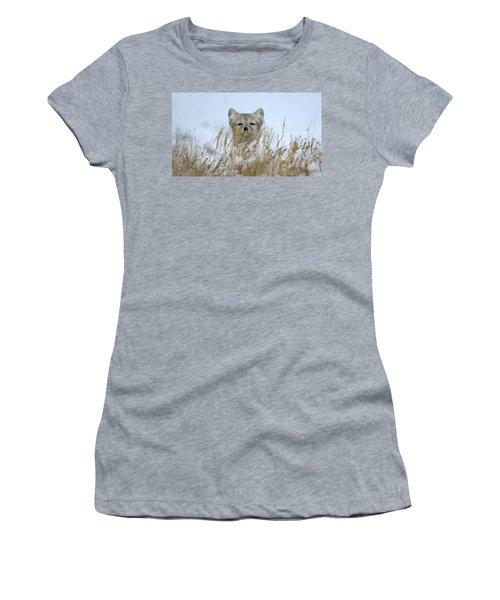 Sachs Harbour Fox Women's T-Shirt (Athletic Fit)