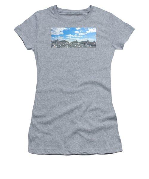 Sand Dolphins At Siesta Key Beach Women's T-Shirt