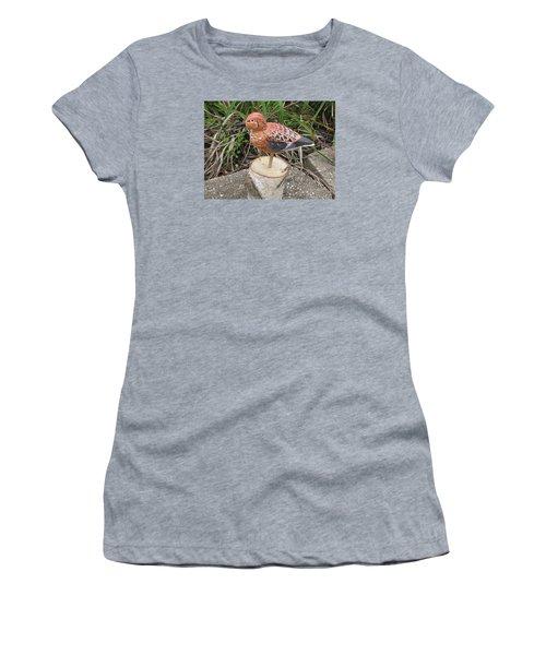 Sanderling Foward 3 Women's T-Shirt (Junior Cut) by Kevin F Heuman