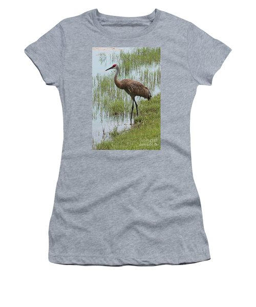 Sandhill In The Marsh Women's T-Shirt (Athletic Fit)