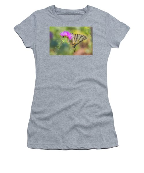 Scarce Swallowtail - Iphiclides Podalirius Women's T-Shirt (Athletic Fit)