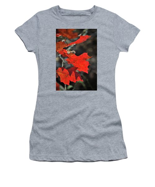 Scarlet Autumn Women's T-Shirt