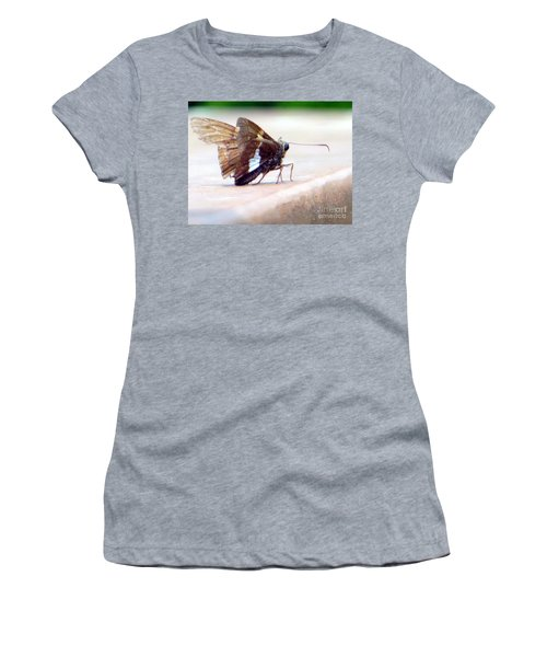 Women's T-Shirt featuring the photograph Silver Spotted Skipper Butterfly by Rockin Docks Deluxephotos