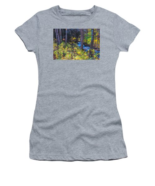 Small Stream Through Autumn Woods Women's T-Shirt