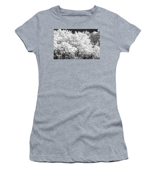 Snow And Frost On Trees In Winter Women's T-Shirt (Junior Cut) by John Brink