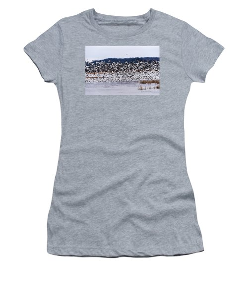 Snow Geese At Squaw Creek Women's T-Shirt (Junior Cut) by Edward Peterson