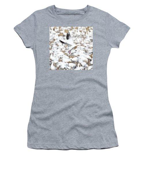 Snow Goose Lift-off Women's T-Shirt