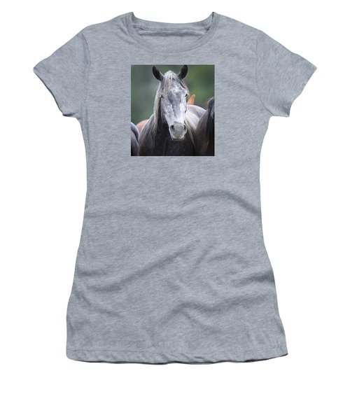 Steel Grey Women's T-Shirt (Junior Cut) by Diane Bohna
