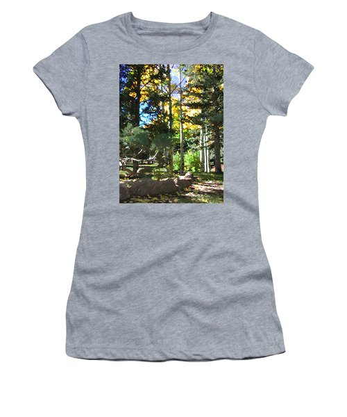 Stone Park Trails Women's T-Shirt (Athletic Fit)