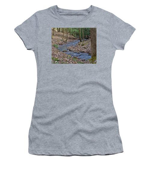Stream Up The Hollow Women's T-Shirt (Junior Cut) by Denise Romano