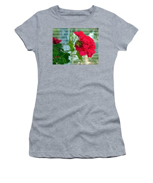 Stunning Red Geranium Women's T-Shirt