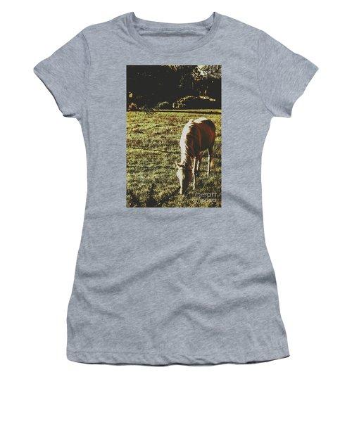 Sundown Horse Meadow Women's T-Shirt