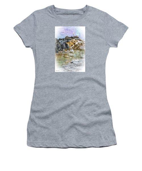 The Galaxian Traveler Corp Women's T-Shirt