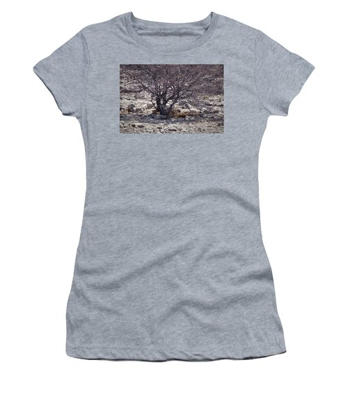 Women's T-Shirt (Junior Cut) featuring the photograph The Lion Family by Ernie Echols