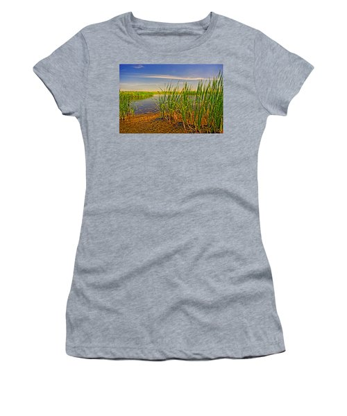 The Marshes Of Brazoria Women's T-Shirt (Athletic Fit)