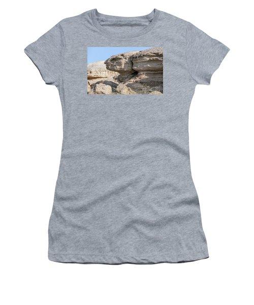 The Old Gatekeeper Women's T-Shirt (Junior Cut) by Arik Baltinester
