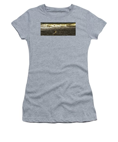 The Wading Willet  Women's T-Shirt