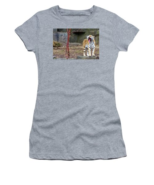 Tiger Tiger Burning Bright Women's T-Shirt