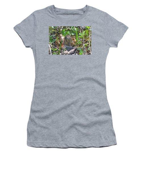 Timberdoodle Hen At Her Nest Women's T-Shirt